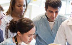 تحصیل دکتری در ایتالیا